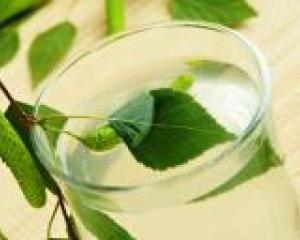 Лечение листьями березы